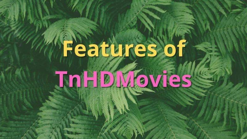 How TnHdMovies site works?
